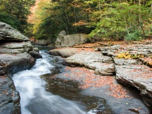 Fall Shot Ohiopyle State Park