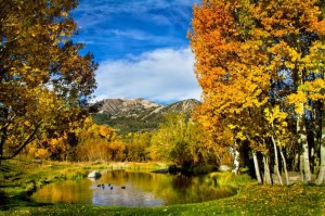 Fall landscape photo beautiful sky, colorful trees, mountains and lake