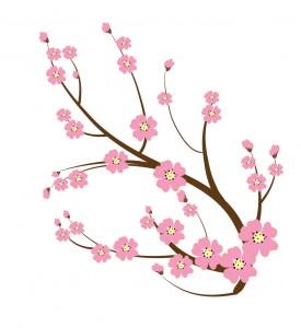 Japanese blossoms