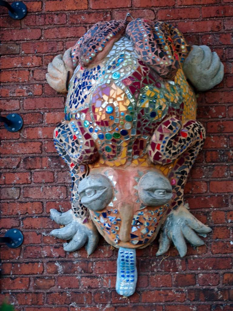 Jeweled Frog